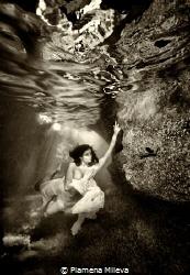 Underwater kingdom by Plamena Mileva