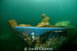 Sailboat with statue at bow, Lake Rawlings,VA by David Gilchrist