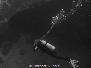 Diving the Hilma Hooker by Herbert Dubois