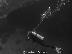 Diving the Hilma Hooker by Herbert Dubois