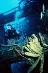 Beautiful Hilma Hooker shipwreck, Bonaire, Oct. 2005, sli... by Erich Reboucas