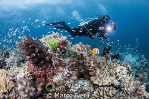 Photographer entranced by Marco Fierli