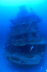 Roatan, Honduras. Odyssey wreck, 115 feet and natural light. by Shawn Jackson