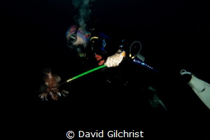 'M1', the Lion Fish Hunter, by David Gilchrist