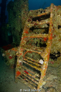 Ladder near the Bow of the El Aguila wreck, Roatan by David Gilchrist