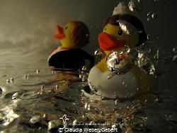 rubber duck wedding fashion by Claudia Weber-Gebert
