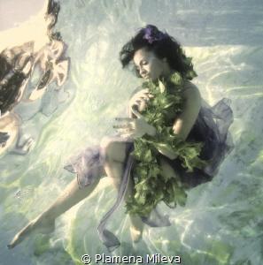 White dreams by Plamena Mileva