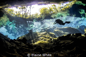 Reflections of Chac Mool, Cenotes, Mexico by Elaine White