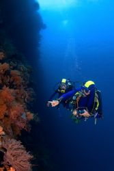 Father and daughter on a Wakatobi wall dive by Karl Dietz