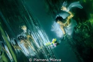 Moon bouquet by Plamena Mileva