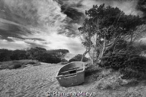 Solitary by Plamena Mileva
