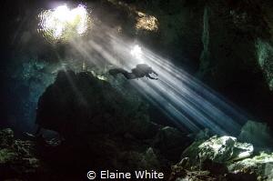 Diving in the spotlight, Taj Mahal, Cenotes by Elaine White