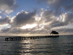 Island of Cosumel, Mexico After Wilma by Gordana Zdjelar