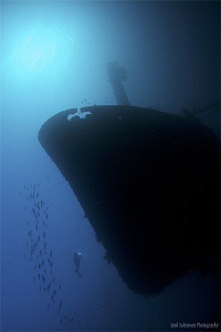 Cedar Pride Wreck Actually this wreck lies on its left s... by Iyad Suleyman