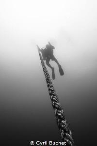 C-56 Wreck Puerto Morelos Mexico by Cyril Buchet