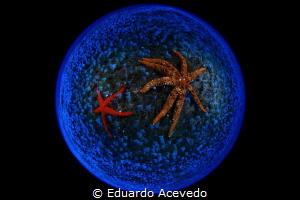 Canon 8-15mm len. by Eduardo Acevedo