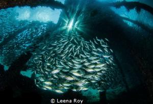 Beneath Arborek jetty by Leena Roy