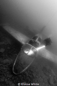 Diver on the provost jet plane by Elaine White
