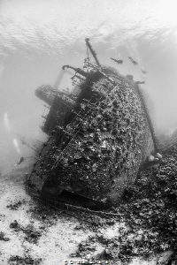 The Giannis D sank with its cargo of timber at Sha'ab Abu... by Christian Schlamann