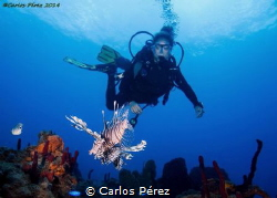 The Flying of two species.. In the rigth moment in the ri... by Carlos Pérez
