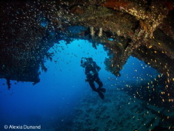 Wreck diving. by Alexia Dunand