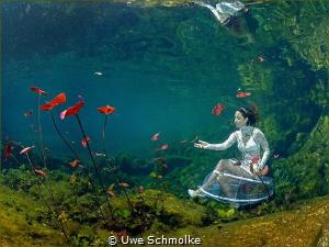 Magic garden. by Uwe Schmolke