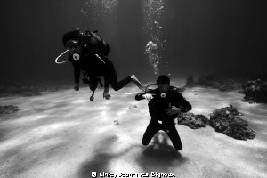 Gunners Point 7 m -black and white shot underwater Canon ... by Linley Jean-Yves Bignoux