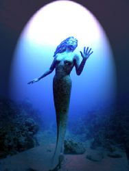 Does the light not always shine on Beauty? The mermaid of... by Michael Canzoniero