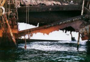 Loullia shipwreck, Sharm el Sheikh, Nikon F65,Nikkor 28-8... by Philip Norris