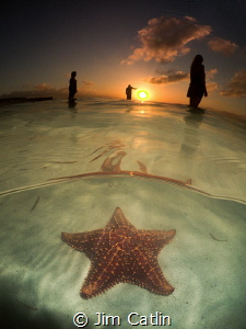 Sunset silhouettes... Starfish point, Grand Cayman by Jim Catlin