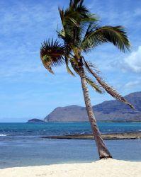 West Shore Oahu Hawaii. by Glenn Poulain