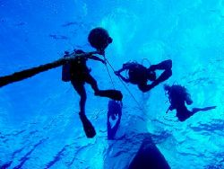 Divers Descending - Oahu, HI. by Dallas Poore