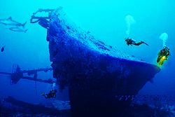 PNG-New Ireland-Kavieng-wreck>DOK YANG Nik.RS-COMPOSING > divers/sharks