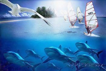solomon islands - COMPOSING > silvertips/bird/surfies - nikon RS