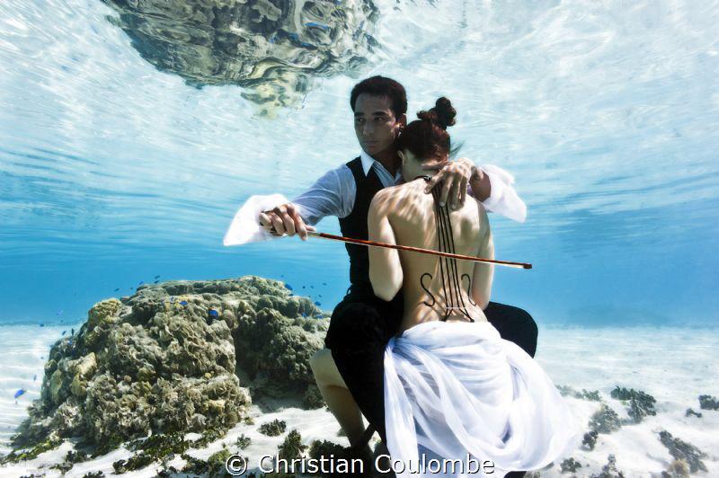 Underwater photographer Julia Wheeler earns third place in