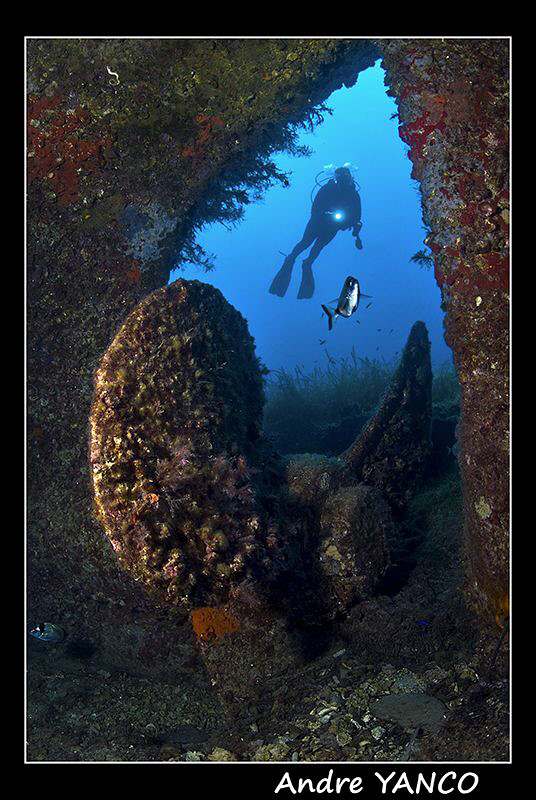 Prop of the Monem Wreck in Cesme.  It turns out that my model was not the only one posing for thşs shot :)  Nikon D200+Sigma 15mm Fisheye with YS110 Strobe connected via TTL converter.