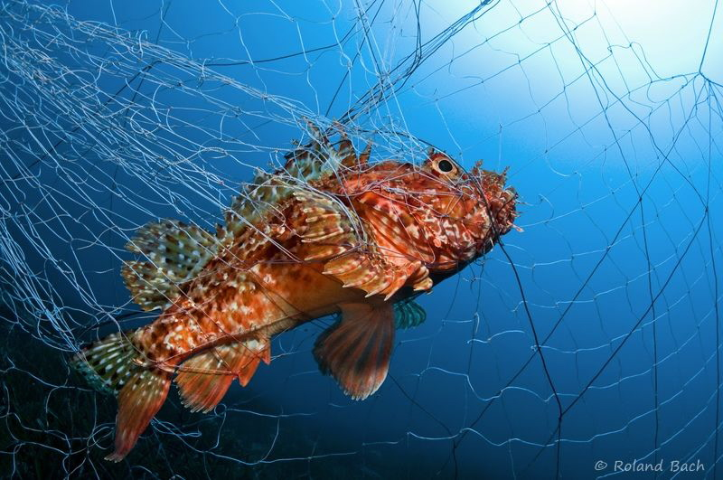 """SAD MOMENTS""