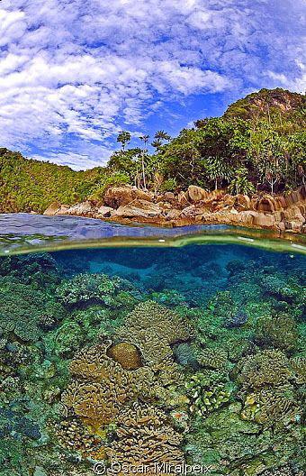 Raja Ampat PARADISE Nikon d70s and Nikkor 10.5