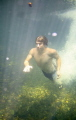 My nephew diving into the Blue Hole in the Daintree Forest,