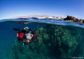 Lanzarote divers' paradise.