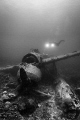 A diver exploring a WWII JAKE Sea Plane in Palau.