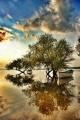 Uluabat lake Golyazi/Bursa