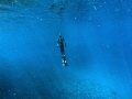 That awesome flying feeling whilst ascending yet it's the critical part for a freediver/spearo as risk of b/o is high in these zones. As always, never freedive alone.