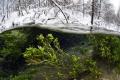 Winter Split / Russia, Green key