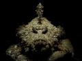 Sympathy for the devil - devil scorpionfish