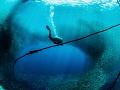 Diver & Sardine Ball