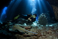 Dive in a fantastic cave system called Claudia in the Fury Shoals Egypt where the light came in nicely from above.