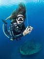 Divemaster at work
