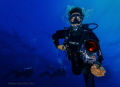 Ras Mohamed Red Sea Divers with a fish eye