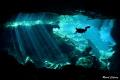 Cenote scenery